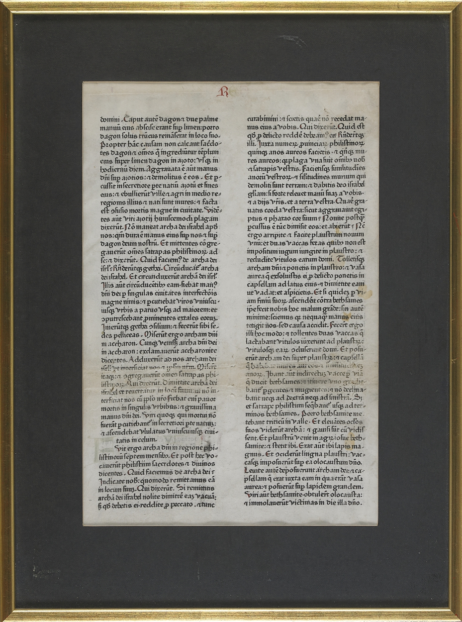 Biblia latina 1462 one vellum leaf