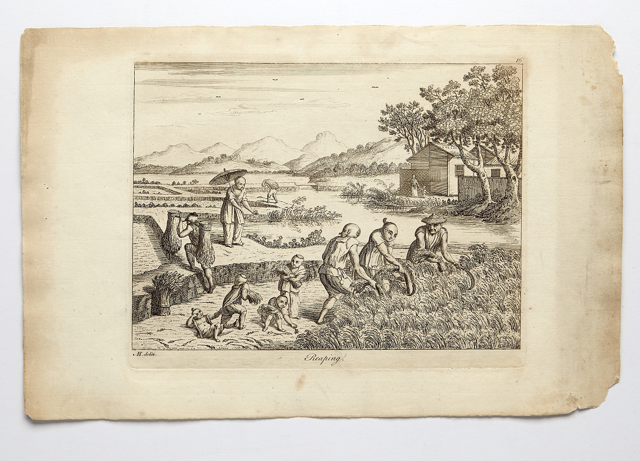 Engravings on rice manufactury in China c. 1770ies